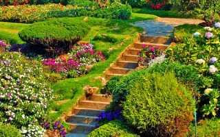 Как сделать лестницу на склоне на даче